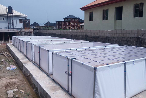 Jovana integrated farms for Tarpaulin fish pond